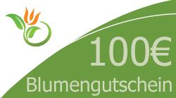 Blumenstrauss 100 Euro Blumengutschein