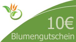 Blumenstrauss 10 Euro Blumengutschein