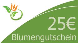 Blumenstrauss 25 Euro Blumengutschein