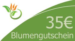 Blumenstrauss 35 Euro Blumengutschein