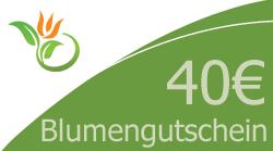 Blumenstrauss 40 Euro Blumengutschein