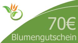 Blumenstrauss 70 Euro Blumengutschein