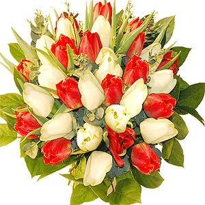 Blumenstrauss Frühling rot-weiß