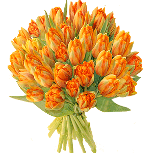 Blumenstrauss Tulpen pur in verschiedenen Farben
