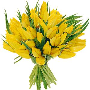 Blumenstrauss Tulpen gelb