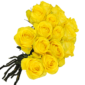 Blumenstrauss Rosenstrauß Latina