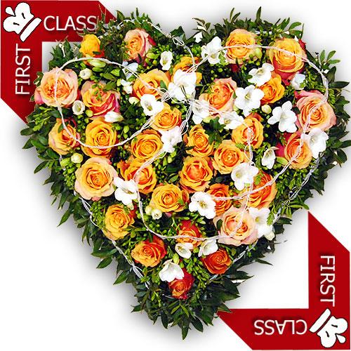 FirstClass Produkte