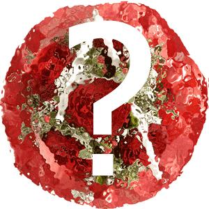 Blumenstrauss Anfrage für Blumenmailing