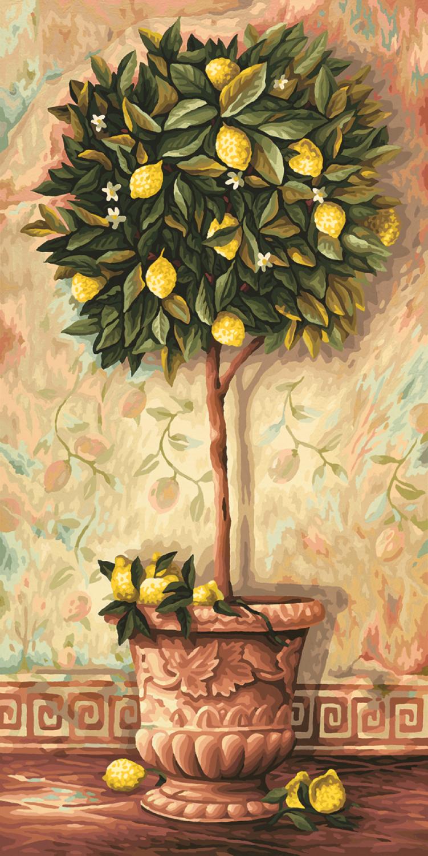 Malen nach Zahlen - Citrus Limonum