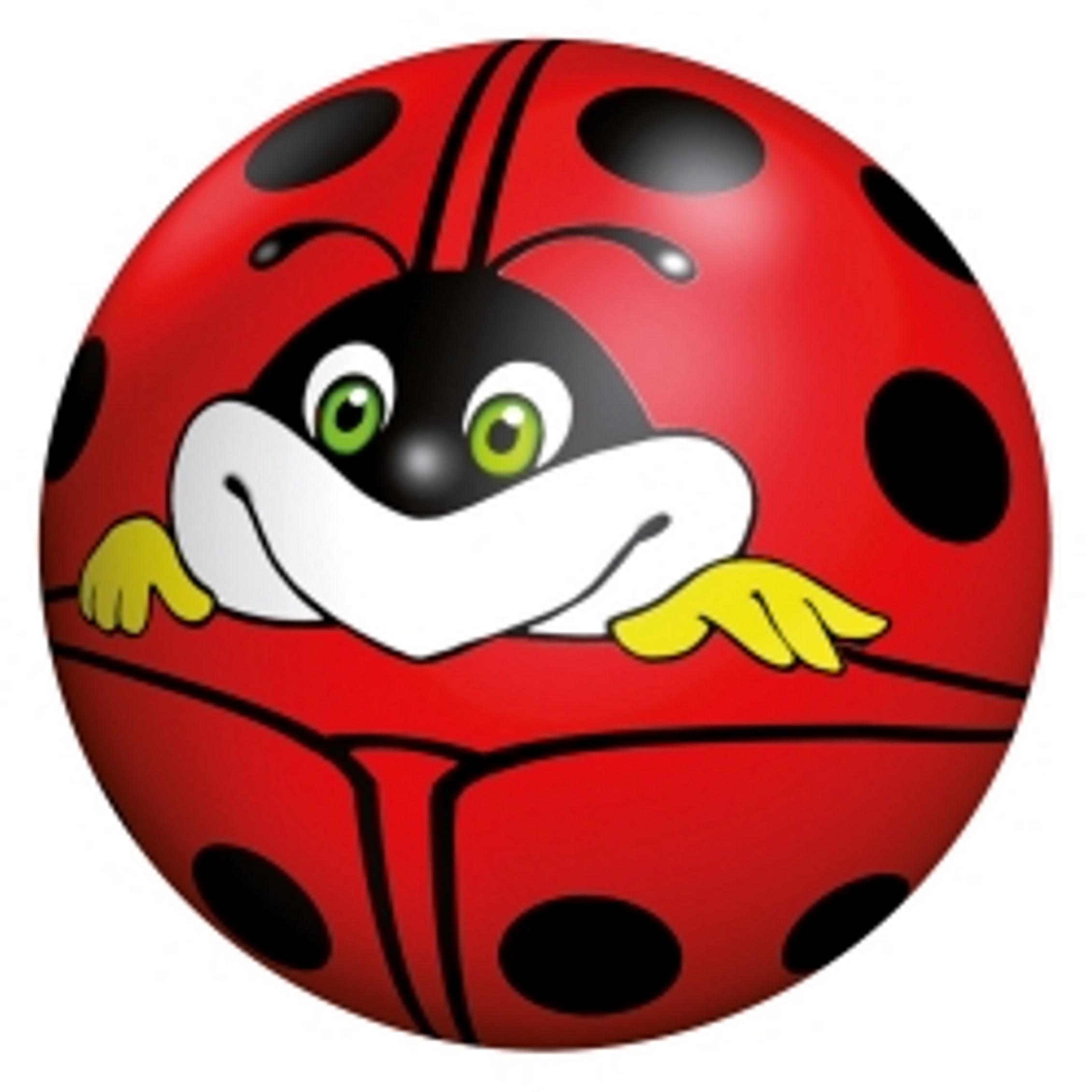 New Ladybird Buntball 18 cm