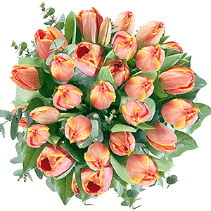 Blumenstrauss Blumenstrauß orange Tulpen