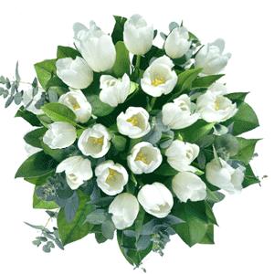 Blumenstrauss Blumenstrauß weise Tulpen
