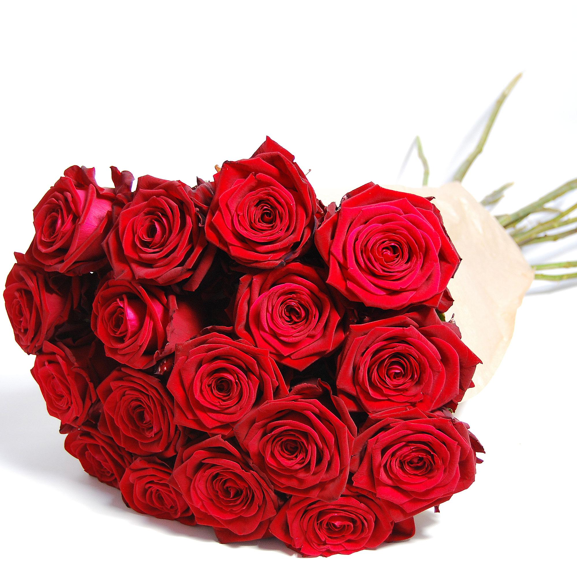 Blumenstrauss Rose Red Naomi Supra