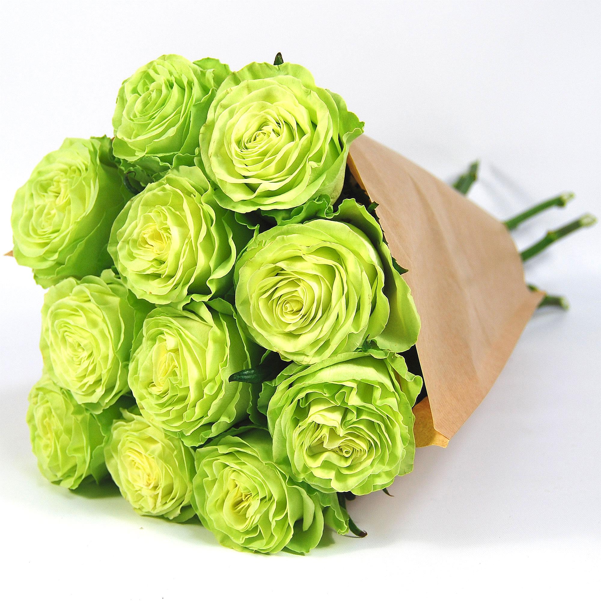 Blumenstrauss Rose Wasabi