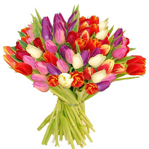 Blumenstrauss bunte Tulpen