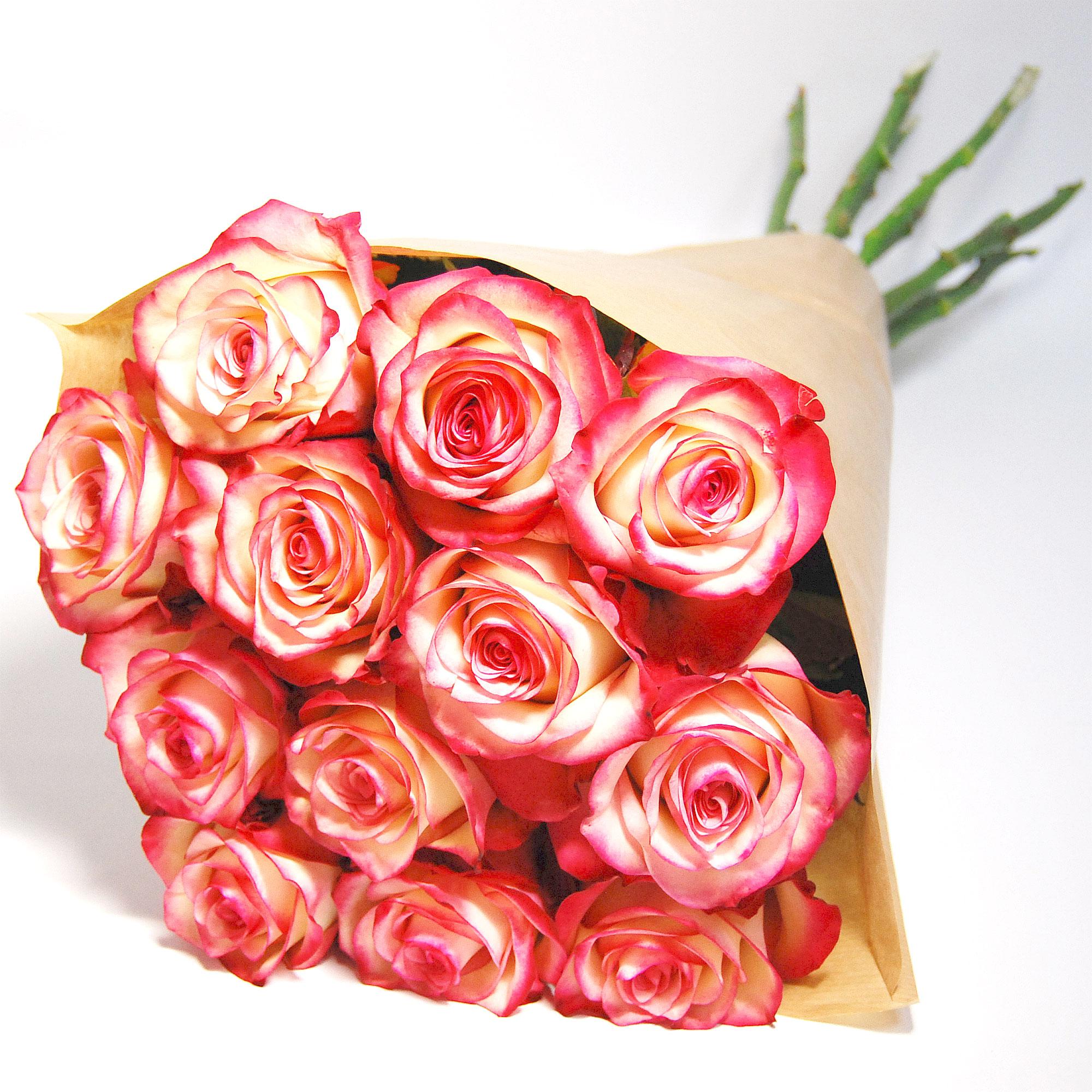 Blumenstrauss Rose Paloma